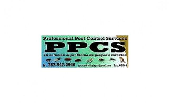 Professional Pest Control Servises