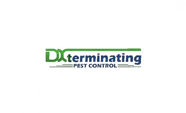 DX Terminating