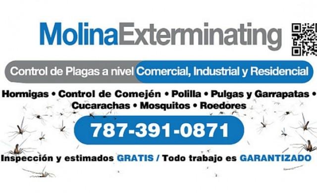 Molina Exterminating