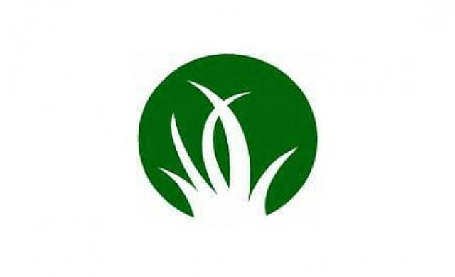 Gramas Verdes Inc