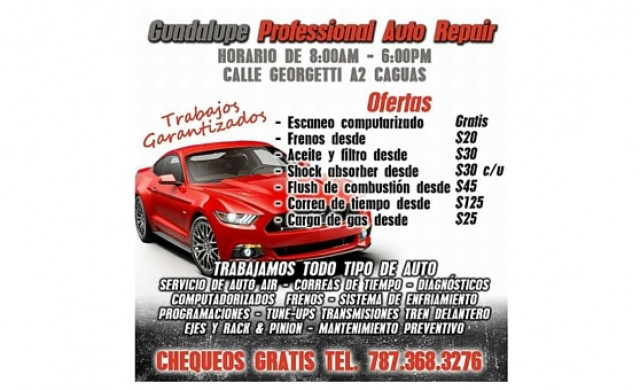 Guadalupe Professional Auto Repair