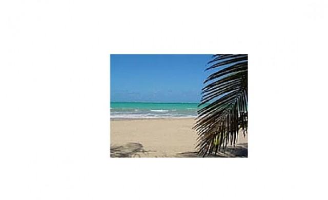 West Indies Properties