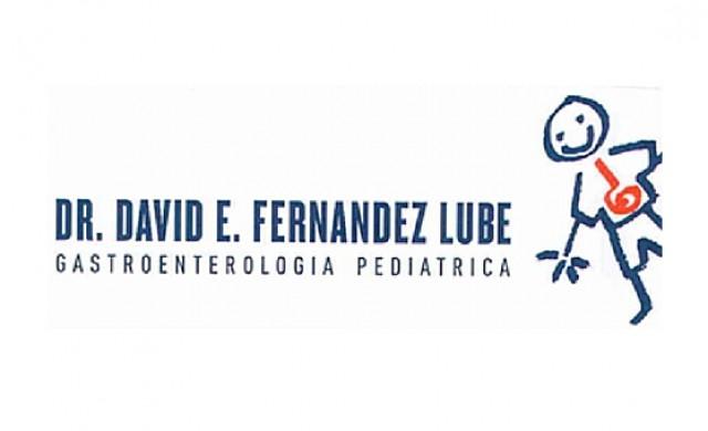 Dr. David E. Fernández Lube
