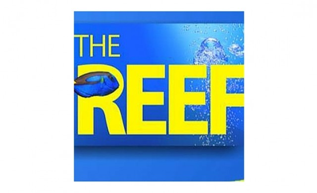 The Reef Aquarium & Pet Shop