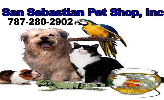 San Sebastian Pet Shop