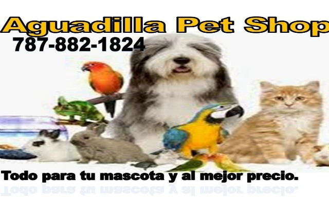 Aguadilla Pet Shop