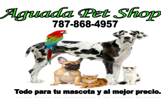 Aguada Pet Shop