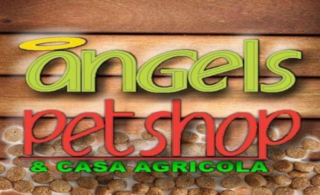 Angel's Petshop
